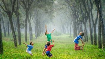 Anak Tumbuh di Lingkungan Hijau Punya IQ Lebih Tinggi?