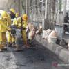 Dinas Bina Marga Dapat Dana Rp 16,6 M, PSI DKI: Segera Perbaiki Jalan Rusak