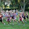 Ini nih Panduan Lari Marathon untuk Pemula