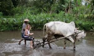 Global Green Destinations Days, Memasukan 4 Desa Wisata di Indonesia dalam Programnya