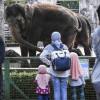 Kapasitas Kunjungan Taman Margasatwa Ragunan Dibatasi 50 persen
