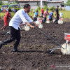 Survei IndEX: Tingkat Kepuasan Publik Terhadap Jokowi 60,8 Persen