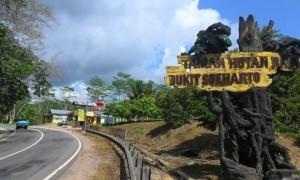 Nanti Kita Cerita Taman Hutan 'Impian' Bukit Soeharto