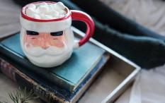 Tradisi Menyiapkan Makanan dan Minumandi Berbagai Negara untuk Santa Claus