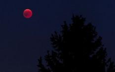 Wilayah Indonesia yang Bisa Melihat Super Blood Moon pada 26 Mei