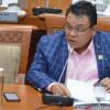 PAN Yakin Mayoritas Fraksi di Parlemen Dukung Revisi UU ITE
