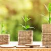 Jangan Tergiur Iming-iming Kekayaan, Nih Cara Terbaik Memilih Investasi