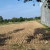 699 Desa di Jatim Diprediksi Alami Kekeringan Kritis