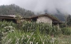 Sisa Material Abu Vulkanis Menyelimuti Boyolali, Warga Kesulitan Cari Pakan Ternak