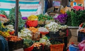 Diet Rendah Bakteri Hanya Untuk Menjaga Kesehatan