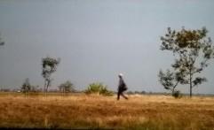Enak tho Zamanku - Piye Kabare, Film Multitafsir
