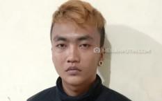 Dijebak Korban, Pelaku Pencurian 11 Ikan Cupang Seharga Rp4,9 Juta Ditangkap Polisi