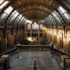Anak Muda Indonesia Diharapkan Tetap Kunjungi Museum