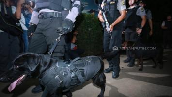Sejumlah Terduga Teroris Jaringan JAD Ditangkap di Papua