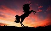 Unicorn, Bukan Sekadar Hewan Mitologi