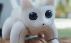 Mengenal MarsCat, Si Robot Kucing Canggih Berharga Fantastis