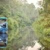 Misteri Tenggelamnya Kapal Klotok di Sungai Sekonyer