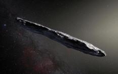 Oumuamua, Asteroid Pengembara