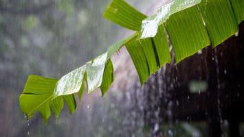 Seminggu ke Depan, 29 Wilayah Indonesia Alami Hujan Lebat Disertai Petir