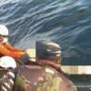 Puluhan Orang Masih Hilang di Perairan Kalbar, Tim Sar Maksimalkan Pencarian
