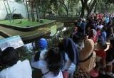 Menjelang Akhir Libur Lebaran, Taman Margasatwa Ragunan Masih Ramai Wisatawan