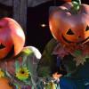 Ide Kencan Unik untuk Rayakan Halloween