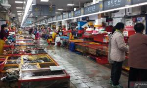 Jalan-Jalan di Pasar Ikan Terbesar di Korea Selatan