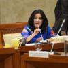 RUU KUP, Fraksi Demokrat Tolak Pengenaan PPN Pendidikan hingga Sembako
