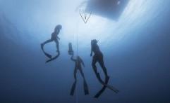 Tingkatkan Kunjungan Wisatawan, Aceh Gelar Freediving Championship 2018