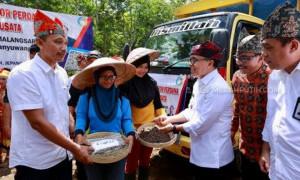 Masa Pandemi, Banyuwangi Ekspor 600 Ton Kopi ke Eropa