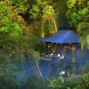 'Dream Now Travel Later', Menginap di Hutan Bali Setelah Pandemi