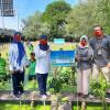 Penanaman 5.000 Bibit Mangrove di PIK Tingkatkan Kualitas Lingkungan Hidup