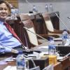 Gerindra Bantah Prabowo Konsumsi Obat Ivermectin untuk Cegah COVID-19