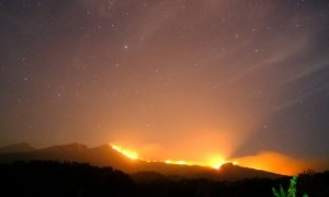Areal Hutan Gunung Rinjani Terbakar