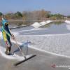 Jokowi Izinkan Industri Impor Garam dan Gula Secara Langsung