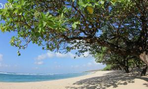 Pemprov Bali Minta Sandiaga Uno Segera Realisasikan Pinjaman Lunak Rp 9,4 Triliun