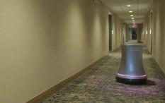 Rosé, Robot Kepala Pelayan Hotel Pembawa Anggur