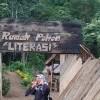 Wisata Sembari Mendalami Adat Minangkabau di Rumah Pohon Literasi