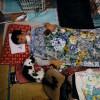 Sakae Kato Tinggal di Fukushima demi Kucing Terlantar