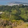 Zealandia: Surga Burung Langka di Selandia Baru