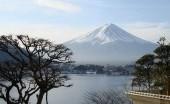Usai Lockdown, Jepang Akan Berikan Potongan Harga Tiket Pesawat untuk Pelancong Domestik
