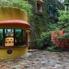 Terancam Tutup, Museum Ghibli Sempat Minta Donasi