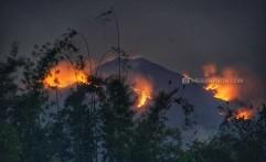 Sekitar 150 Hektare Hutan Gunung Merbabu Terbakar Meluas Sampai Semarang