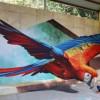 Karya Ilusi 3D Seniman Jalanan Gegerkan Dunia Maya