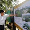 Luhut Ungkap Masalah Utama Candi Borobudur