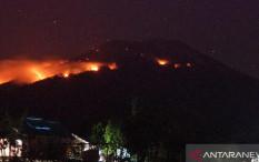 Gunung Berapi Ile Lewotolok Terbakar Akibat Lontaran Lava Pijar