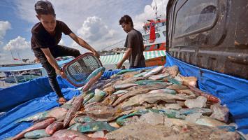 LSM: Pasokan Pangan Perikanan Harus Terjaga Kualitas
