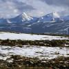 Perubahan Iklim, Tundra di Siberia Meledak