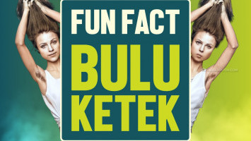 Fun Fact Bulu Ketek