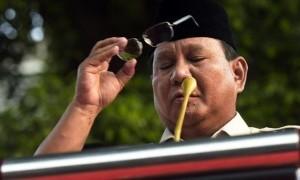 Prabowo Disebut Bisa Bicara dengan Hewan, Ini Cerita Asisten Pribadinya